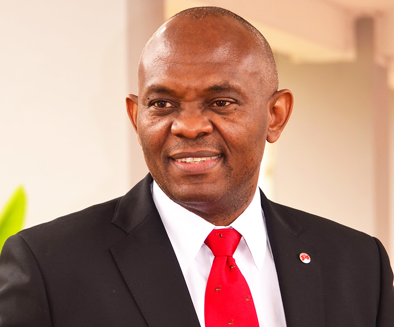 Tony Elumelu Net Worth
