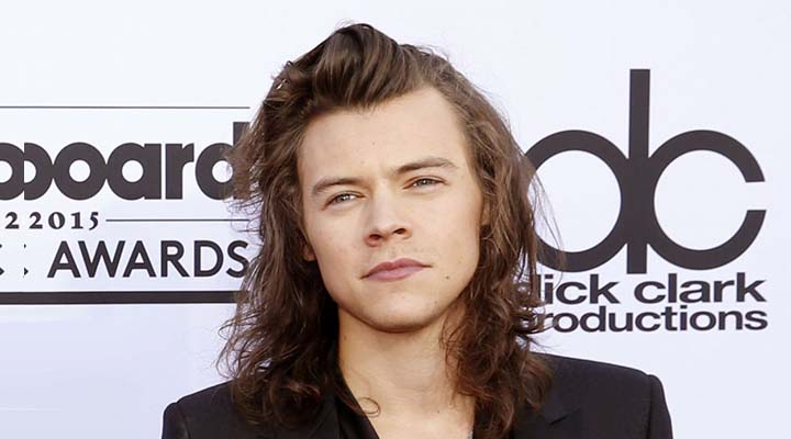 Harry Styles Net Worth