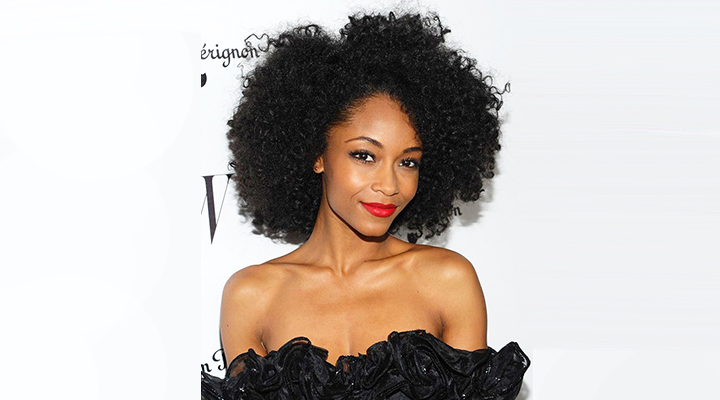 Yaya Dacosta Net Worth